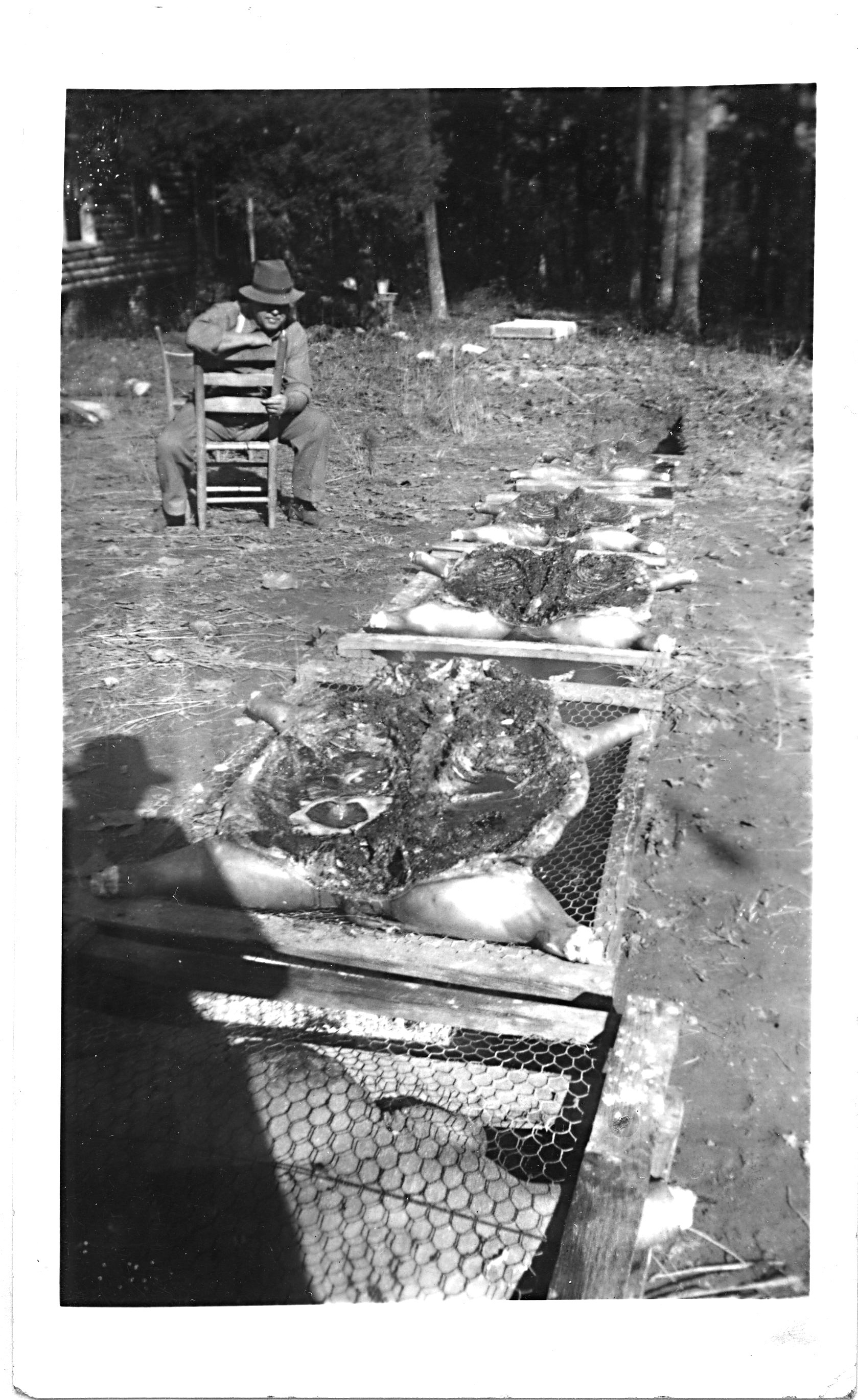 Will Oehler, open pit whole hog 1940's